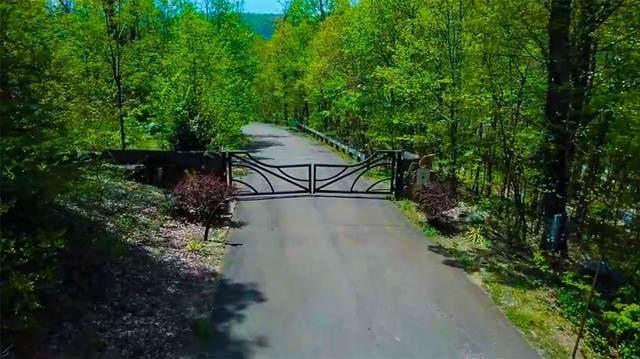 105 Wiggley Lane, Jasper, GA 30143 (MLS #6745673) :: AlpharettaZen Expert Home Advisors