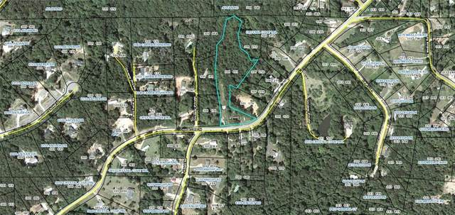 6025 Crystal Cove Trail, Gainesville, GA 30506 (MLS #6748947) :: The Zac Team @ RE/MAX Metro Atlanta
