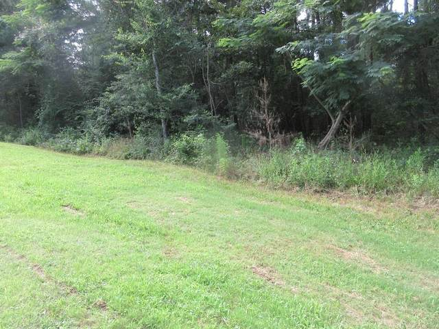 0 Ozora Church, Loganville, GA 30052 (MLS #6749303) :: The Hinsons - Mike Hinson & Harriet Hinson