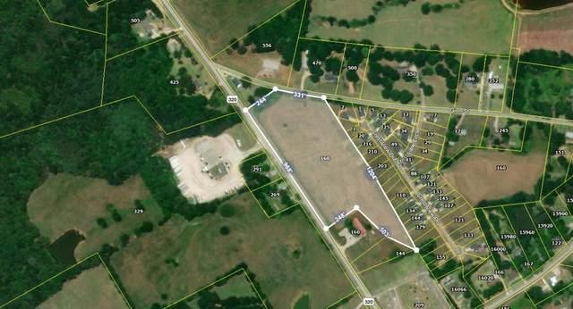 160 Highway 320, Carnesville, GA 30521 (MLS #6751299) :: The Justin Landis Group