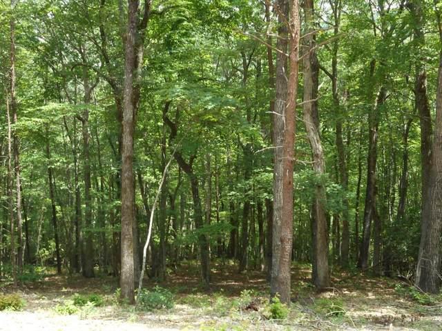 3114 Oakley Mountain Road, Clarkesville, GA 30523 (MLS #6751940) :: North Atlanta Home Team