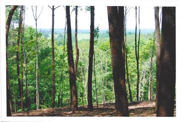 0 Mosswood Lane W, Jasper, GA 30143 (MLS #6761371) :: Vicki Dyer Real Estate