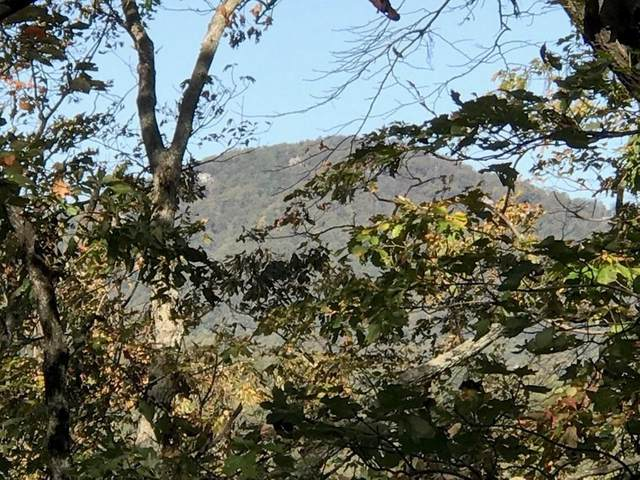 8263 Cox Mountain Drive, Big Canoe, GA 30143 (MLS #6766452) :: The Heyl Group at Keller Williams