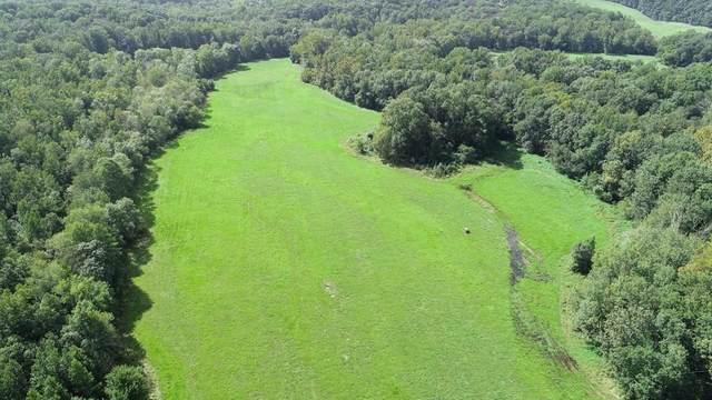 399 Asgard Farm Road, Nicholson, GA 30565 (MLS #6772663) :: Tonda Booker Real Estate Sales