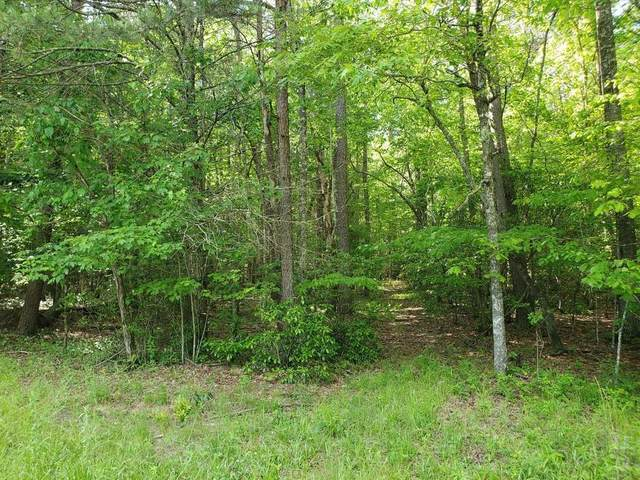 00 Tanner Cove Road, Blairsville, GA 30512 (MLS #6774642) :: RE/MAX Prestige