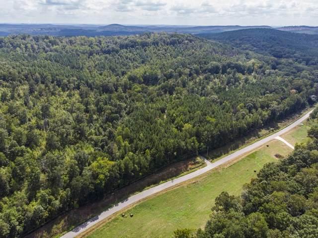 0 Rockfence Road, Adairsville, GA 30103 (MLS #6782529) :: The Heyl Group at Keller Williams