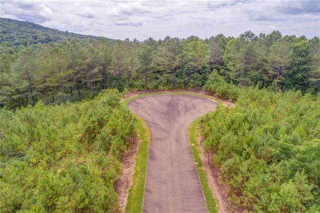 10 Eastview Trail, Ellijay, GA 30540 (MLS #6784881) :: RE/MAX Prestige