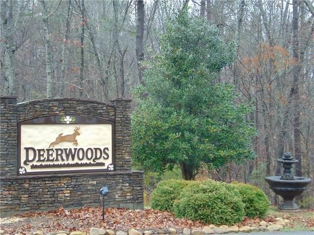 14 Twin Fawns Trail, Dahlonega, GA 30533 (MLS #6785419) :: The Butler/Swayne Team
