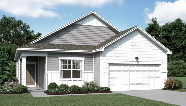 135 Morrow Place, Dawsonville, GA 30534 (MLS #6786964) :: RE/MAX Prestige