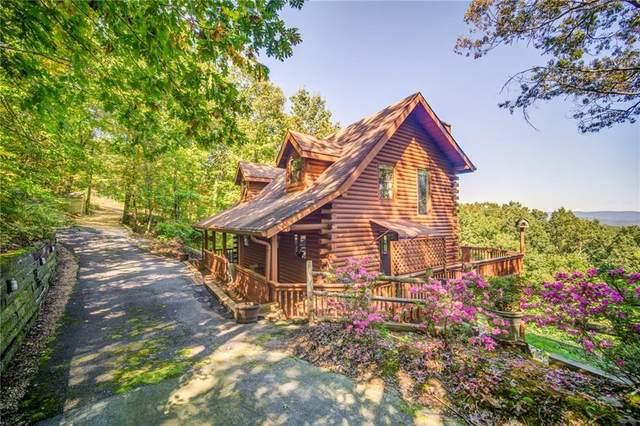 456 Renate Drive, Jasper, GA 30143 (MLS #6790418) :: North Atlanta Home Team