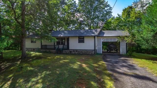 91 River Hills Road, Mineral Bluff, GA 30559 (MLS #6791764) :: North Atlanta Home Team