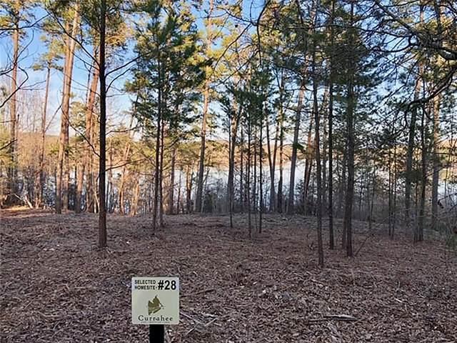 55 Edgewater Trail, Toccoa, GA 30577 (MLS #6795878) :: Lucido Global