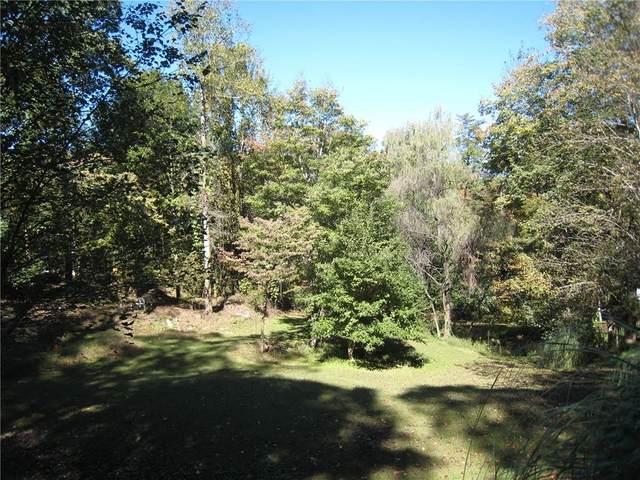 892 Chestatee Circle, Dawsonville, GA 30534 (MLS #6797600) :: North Atlanta Home Team