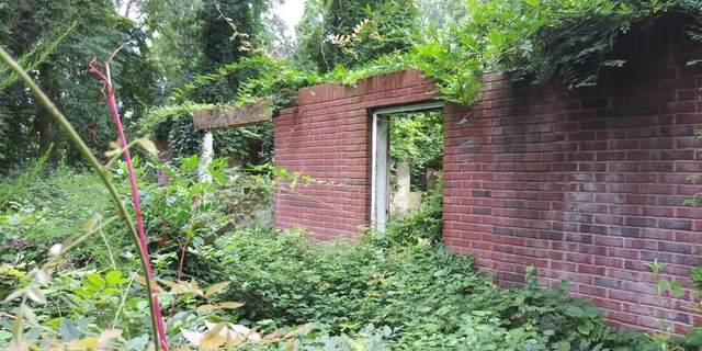 1635 Dodson Drive SW, Atlanta, GA 30311 (MLS #6798497) :: Tonda Booker Real Estate Sales