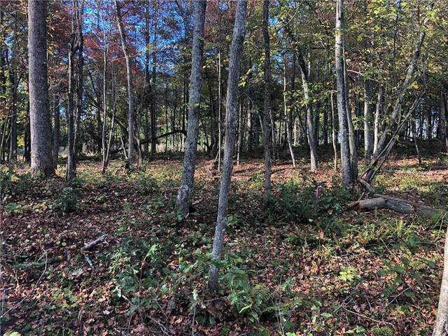 Lot 4 Sunset Cv, Ellijay, GA 30540 (MLS #6800807) :: Kennesaw Life Real Estate