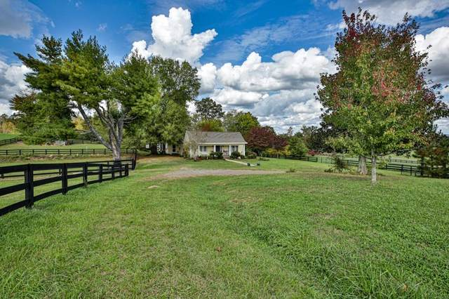 150 Bowen Road, White, GA 30184 (MLS #6802236) :: The Residence Experts