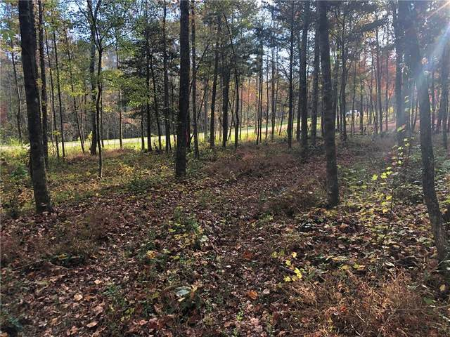 Lot 7 Sunset Cv, Ellijay, GA 30540 (MLS #6802647) :: North Atlanta Home Team