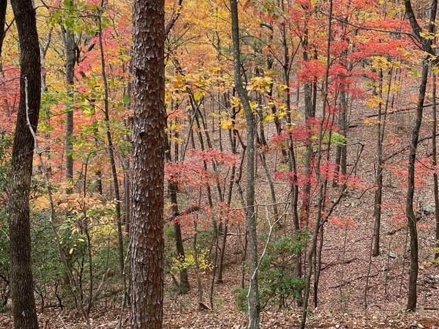 66 Yanegwa Path, Big Canoe, GA 30143 (MLS #6808482) :: North Atlanta Home Team