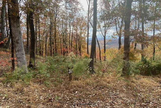209 High Rock Trail, Cleveland, GA 30528 (MLS #6808579) :: North Atlanta Home Team