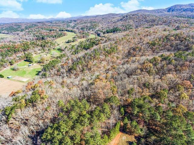 Tr C North Dean Trail, Ellijay, GA 30540 (MLS #6812175) :: AlpharettaZen Expert Home Advisors