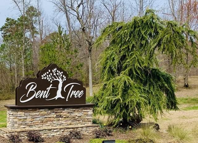 0 E View Trail, Jasper, GA 30143 (MLS #6813943) :: North Atlanta Home Team