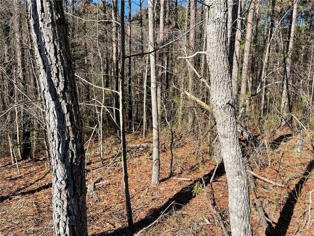 Lot 83 Linger Longer Dr, Ellijay, GA 30536 (MLS #6816175) :: 515 Life Real Estate Company