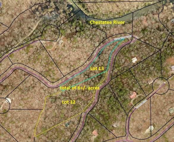 0 River View Trail W, Dahlonega, GA 30533 (MLS #6818969) :: RE/MAX Prestige