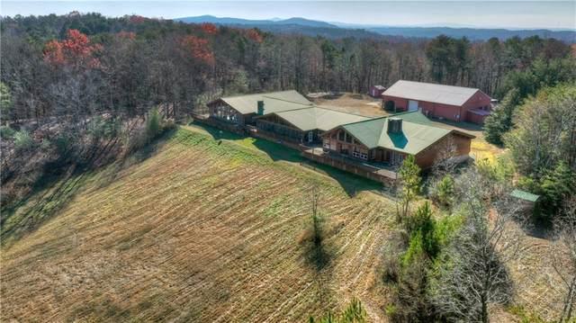 1082 Wolves Trail, Talking Rock, GA 30175 (MLS #6819090) :: 515 Life Real Estate Company