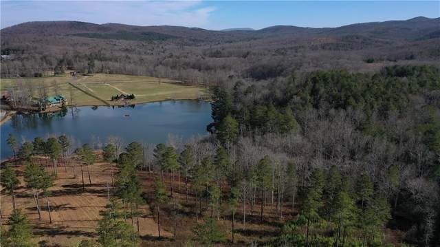 362 Mountainside Parkway, Ellijay, GA 30536 (MLS #6819435) :: RE/MAX Center