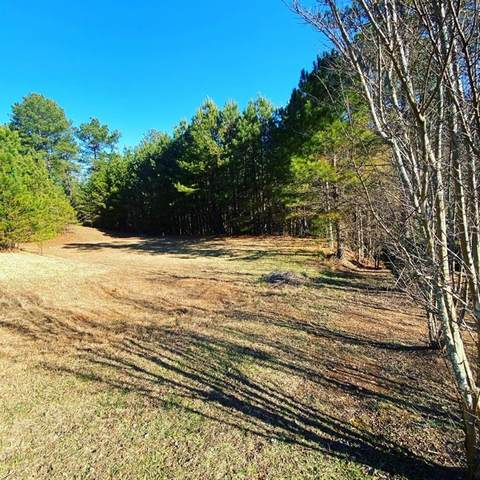 0 Sanctuary Drive, Blairsville, GA 30512 (MLS #6820912) :: The Heyl Group at Keller Williams