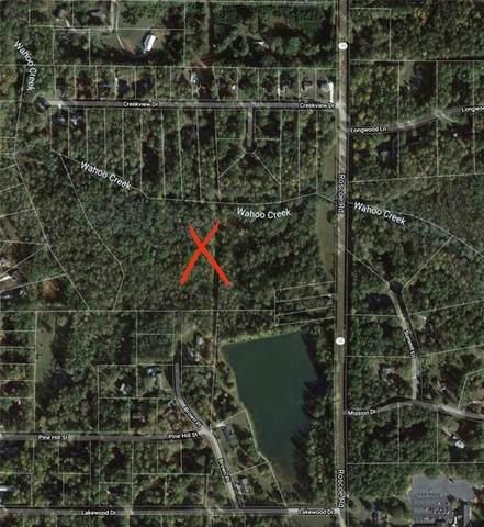 920 Roscoe Road, Newnan, GA 30263 (MLS #6827731) :: North Atlanta Home Team