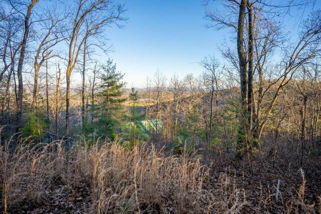 19 B Yonah View Road, Dahlonega, GA 30533 (MLS #6832624) :: Good Living Real Estate