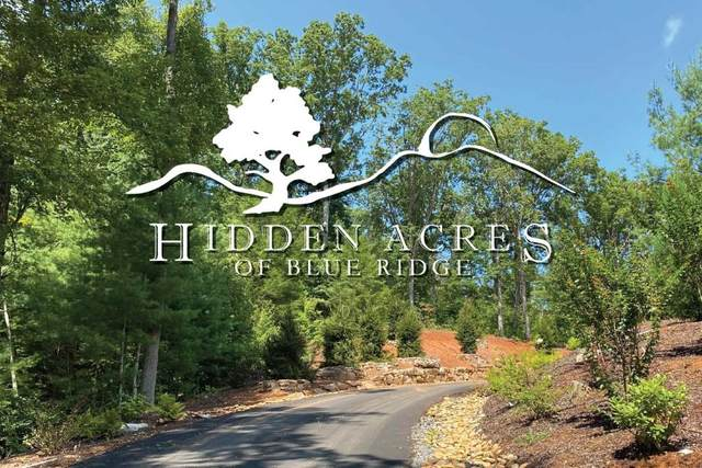 Lot 8 Hidden Acres, Blue Ridge, GA 30513 (MLS #6838893) :: North Atlanta Home Team