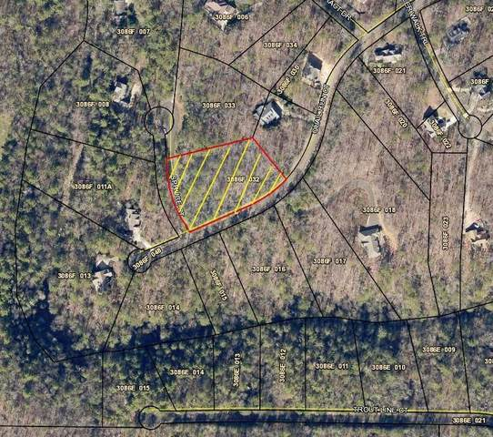 lot138 Quail Run Court, Talking Rock, GA 30175 (MLS #6840745) :: Path & Post Real Estate