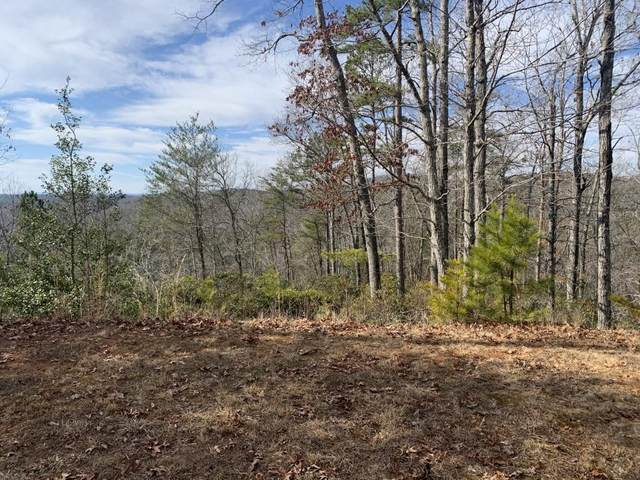 0 Nugget Court, Dahlonega, GA 30533 (MLS #6843303) :: Thomas Ramon Realty