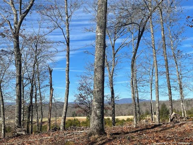 LT 188 Old Toccoa Farm, Mineral Bluff, GA 30559 (MLS #6843384) :: Rock River Realty