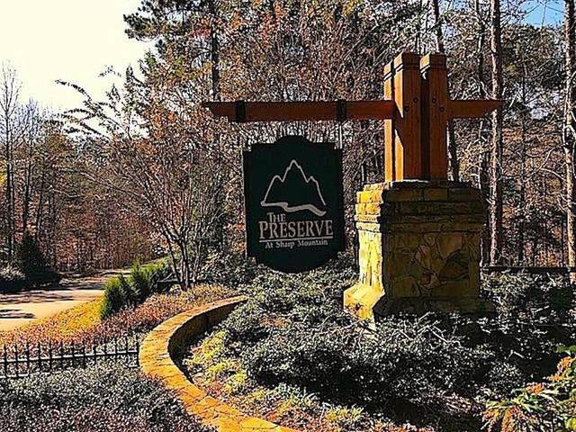 28 Sharp Mountain Court, Jasper, GA 30143 (MLS #6848496) :: Rock River Realty