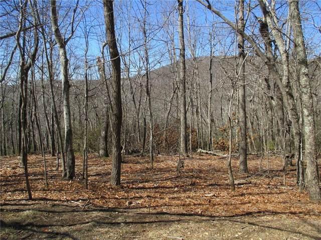 LOT 4 Boundry Creek Trail, Jasper, GA 30143 (MLS #6848565) :: The Zac Team @ RE/MAX Metro Atlanta