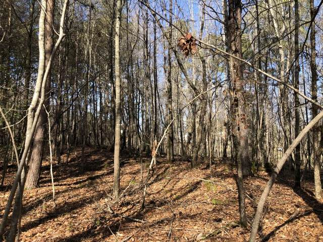 0 Highway 53, Dawsonville, GA 30534 (MLS #6851127) :: Rock River Realty
