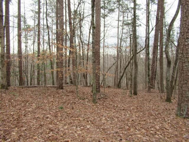 0 Deer Path, Dahlonega, GA 30533 (MLS #6861001) :: Rock River Realty