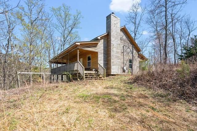 251 Dally Cove Drive, Ranger, GA 30734 (MLS #6861750) :: North Atlanta Home Team