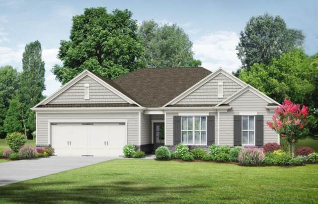205 Vineyard Ridge Drive, Griffin, GA 30223 (MLS #6865013) :: North Atlanta Home Team