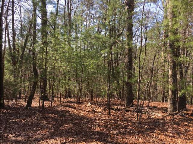 Lot 4 Baylaurel Drive, Helen, GA 30545 (MLS #6865394) :: Kennesaw Life Real Estate
