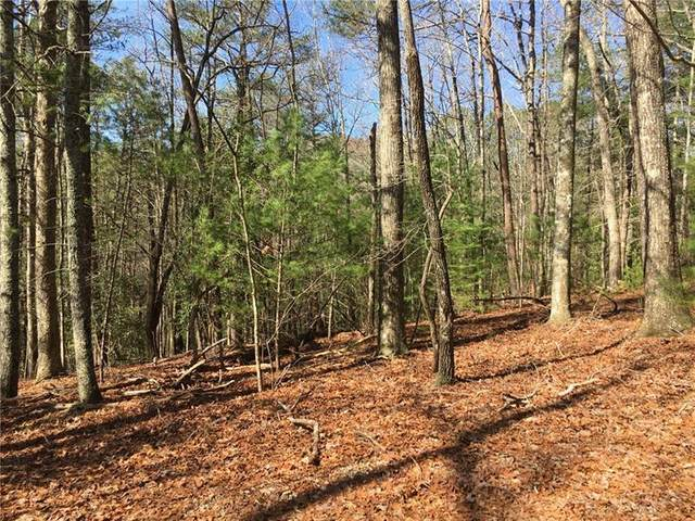 Lot 6 Baylaurel Drive, Helen, GA 30545 (MLS #6865398) :: Kennesaw Life Real Estate
