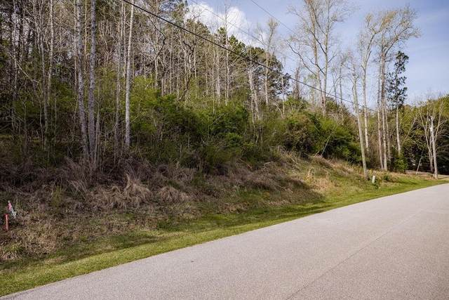 Lot 1A Banks Mountain Dr, Gainesville, GA 30506 (MLS #6866051) :: Oliver & Associates Realty