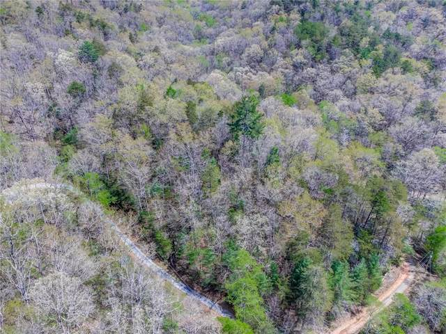 484 Rockwater Road, Ellijay, GA 30536 (MLS #6867728) :: Thomas Ramon Realty