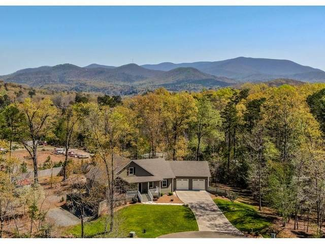 462 Appaloosa Drive, Ellijay, GA 30536 (MLS #6869742) :: Kennesaw Life Real Estate
