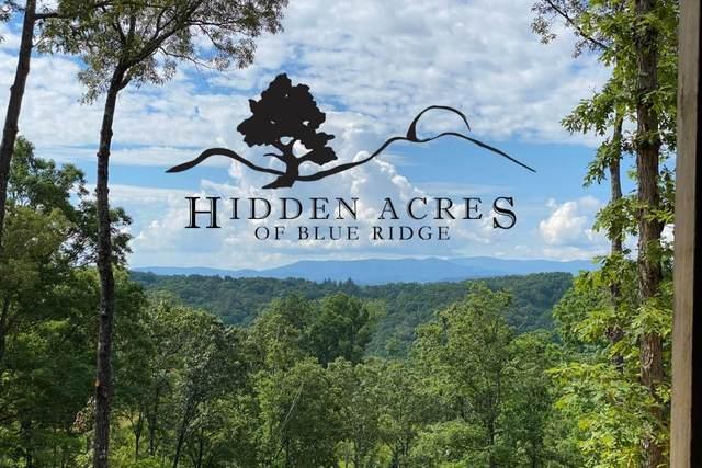 Lot 4 Hidden Acres, Blue Ridge, GA 30513 (MLS #6872472) :: RE/MAX Paramount Properties
