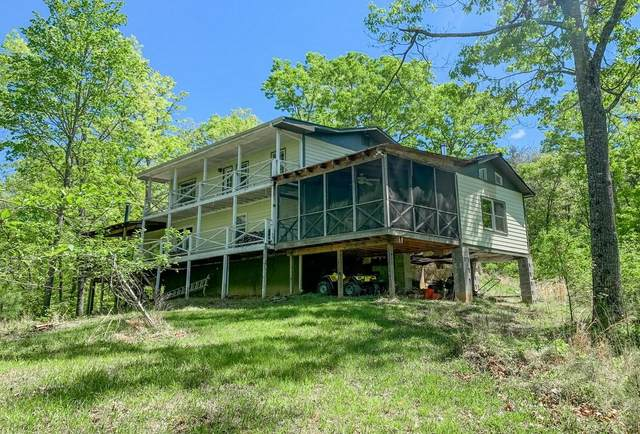 2074 Camp Branch Road, Ellijay, GA 30540 (MLS #6876206) :: The Hinsons - Mike Hinson & Harriet Hinson