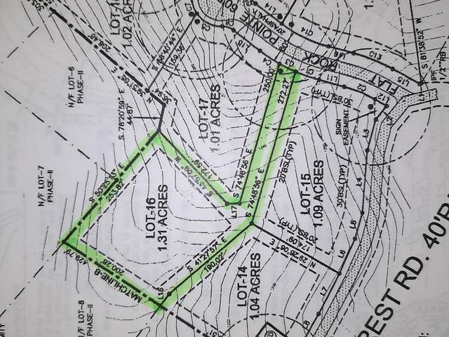 0 Lot 16 Flat Rock Pointe, Dahlonega, GA 30533 (MLS #6877047) :: Thomas Ramon Realty